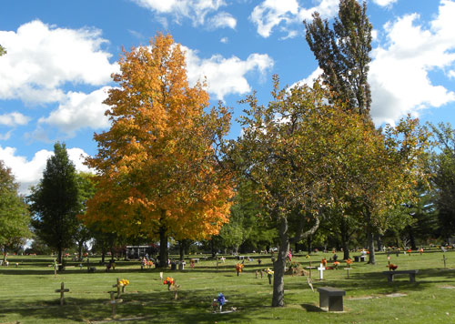 Hope Memorial Gardens - trees - A Cemetery Of All Faiths